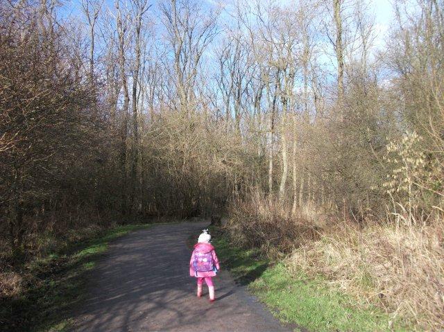 Walking through Fineshade Woods