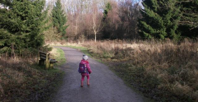 Walking at Fineshade Woods