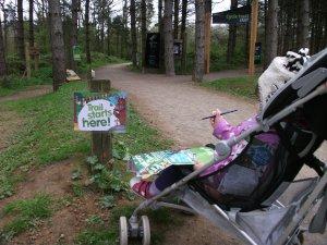 Gruffalo trail at Fineshade Woods