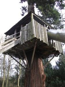 Treehouse slide at Belton House