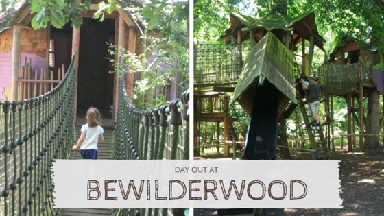 Bewilderwood title